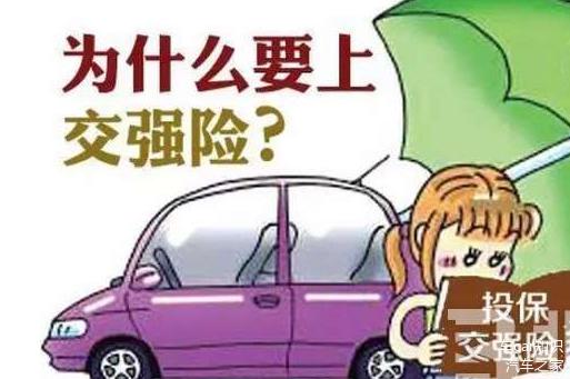 汽车保险,汽车后市场