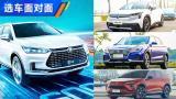 中国品牌纯电动SUV海选